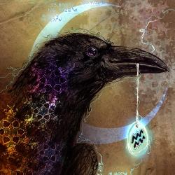 My Aquarian Raven